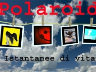 Nuovi Programmi in Partenza! Polaroid: Istantanee di Vita con Roberta Riccardi